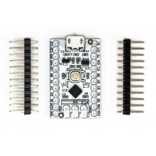 LED-BASIC-PICO Basis-Modul mit 32-Bit Microcontroller